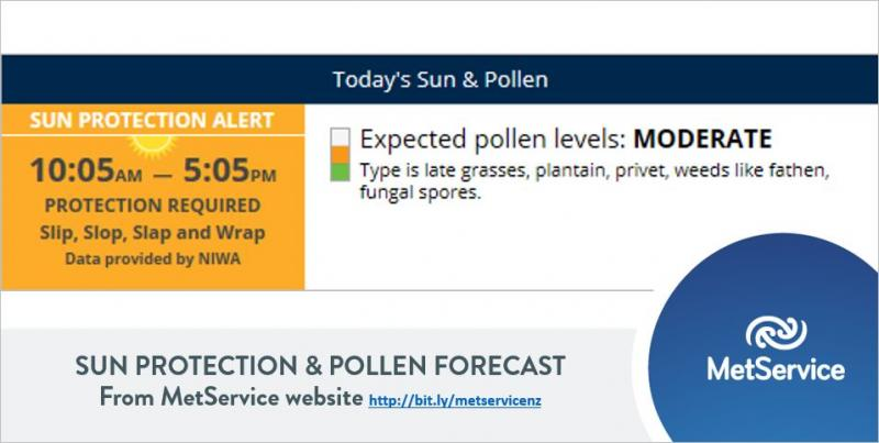 The New Zealand Pollen Forecast | MetService Blog