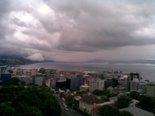 Fog to cloud on Wellington Harbour